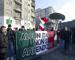 La protesta dei Forconi