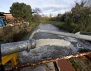 Le idrovore in azione tra Ostia e Fiumicino (Proto)