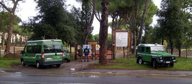 Il sequestro della Forestale lo scorso 27 novembre (Proto)