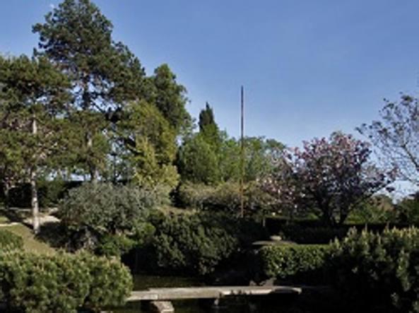 L istituto di cultura nipponico aprele meraviglie dei giardini