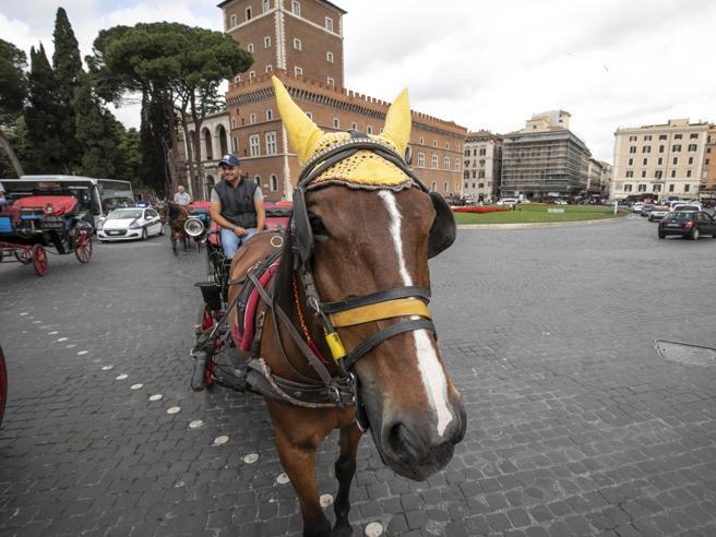 Roma, la rivolta delle botticelle: presidio sotto il Campidoglio
