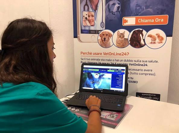 Piccole e medie imprese il digitale arriva online con il for Affitto studio ad ore roma