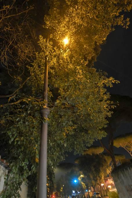 Risultati immagini per serate d'autunno