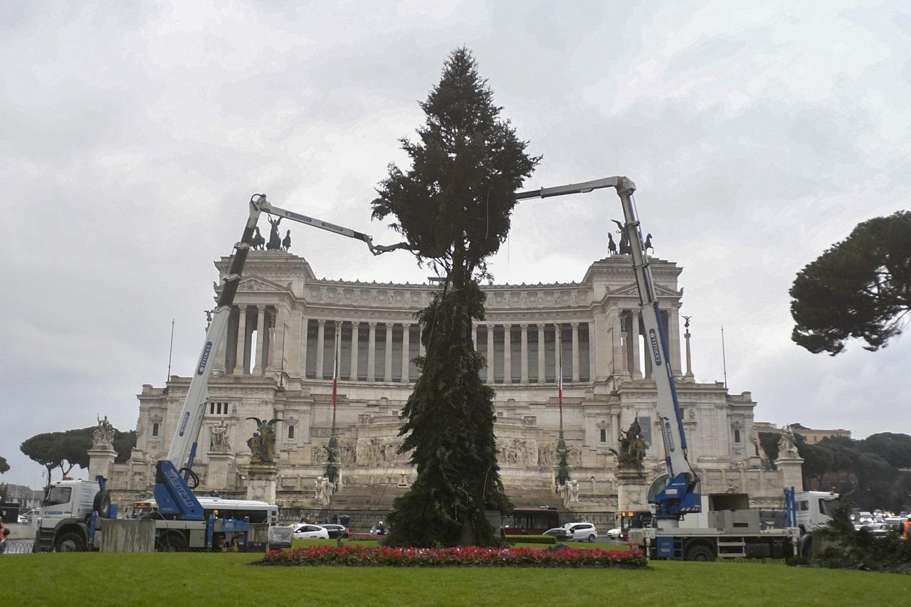 Albero Di Natale Roma 2019.Roma Spelacchio 2 0 Ecco L Albero Di Natale Arrivato In Piazza
