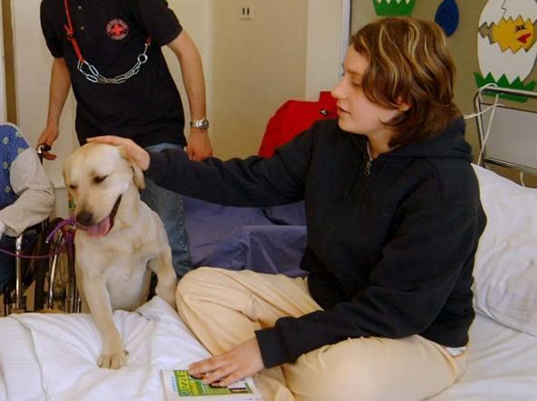 Sanità, in ospedale con cani e gatti: la svolta animalista nel Lazio