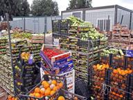 Il Centro Agroalimentare di Roma: «Stabili i prezzi dell'ortofrutta»