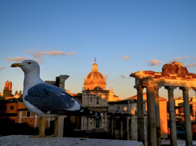 Expo 2030, Raggi: «Roma candidata per mostrare le sue eccellenze»