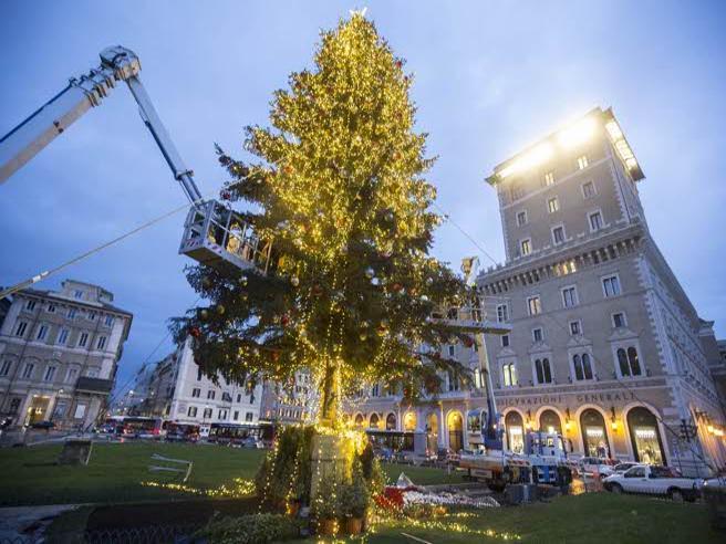 Roma, Spelacchio accende le luci: i romani lo promuovono a pieni voti