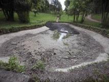 A Villa Ada laghetto prosciugato: anatre e tartarughe in pericolo