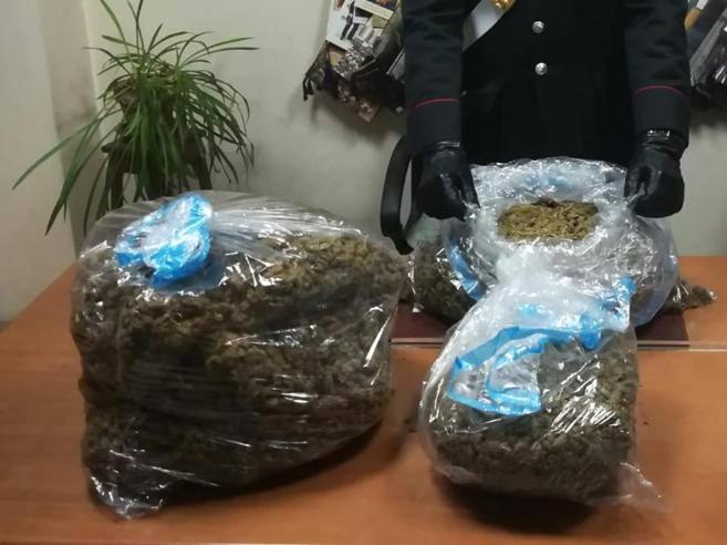 Roma, sequestrati 21 chili di marijuana al Tiburtino: 4 ...